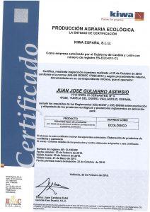 CERTIFICADO JUAN JOSE GUIJARRO ASENSIO-page-001